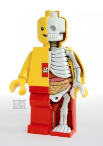 A Look Inside a Lego Figurine